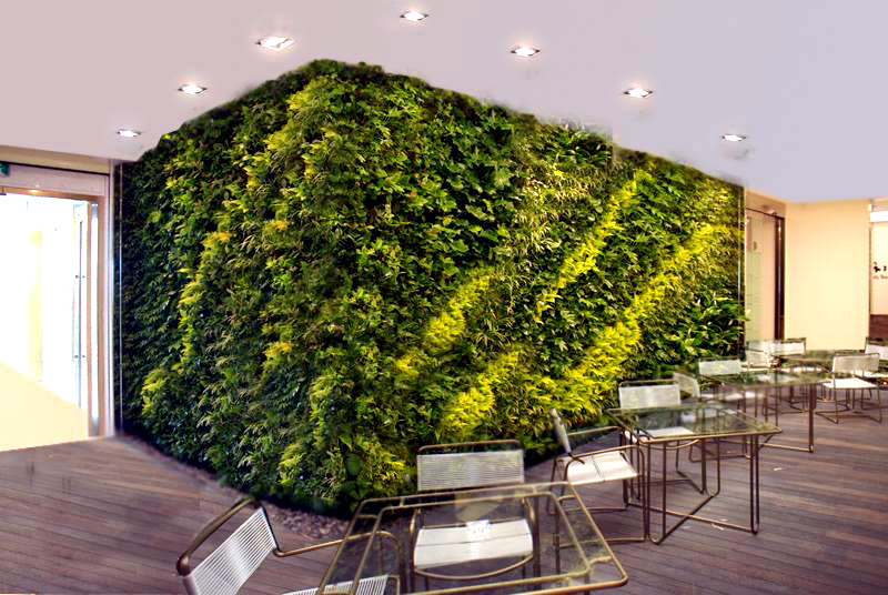 Benefits of Vertical Gardens in the Workplace.
