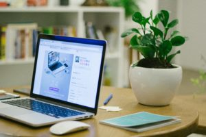 Read more about the article Super green: The science-backed benefits of plants in your workspace