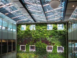 Read more about the article How Do You Design An Eco-Friendly Office