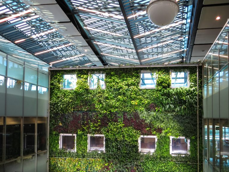 How Do You Design An Eco-Friendly Office